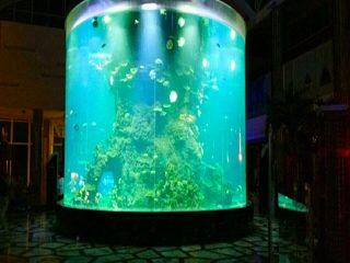 porcelaine coutume pas cher super grand rond pmma verre aquariums clair cylindre acrylique réservoirs de poisson