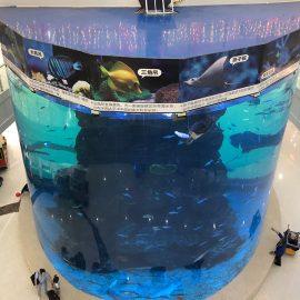 panneaux acryliques de 20 mm à 500 mm d'épaisseur pour les gros poissons modernes