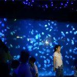 Verre de réservoir d'aquarium de méduses acrylique 2018