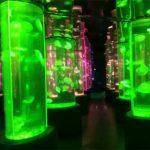 Fournisseur de réservoir de méduses acrylique 2018
