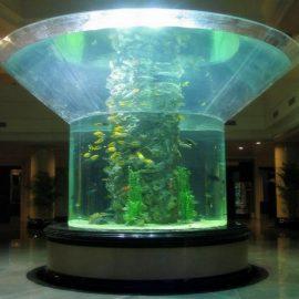 pmma verre aquarium demi-cylindre plexiglas clair aquarium