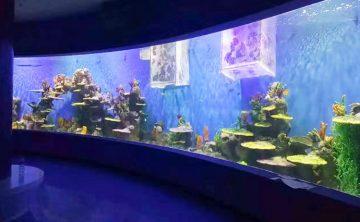Aquatique Acrylique