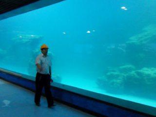 Panneau acrylique UV de mur de fonte pour aquarium, oceanarium