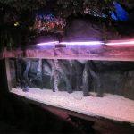 Panneau de piscine en acrylique / fenêtre pour Underwater Sea World