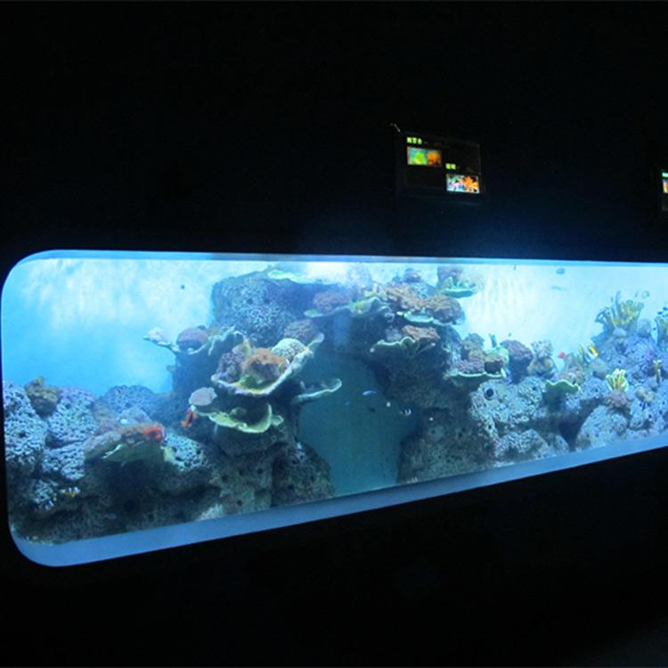 Aquarium de poissons transparent acrylique moulé de fonte artificielle / fenêtre de vue
