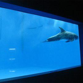 haute qualité grand acrylique feuille d'aquarium / piscine acrylique fenêtre sous-marine épaisse