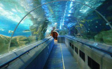Tunnel acrylique