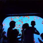 Réservoir de méduses personnalisé