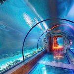 Long tunnel d'aquarium acrylique design moderne