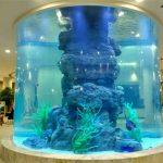 aquarium en cristal