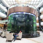 grands aquariums en plastique pour poissons et animaux